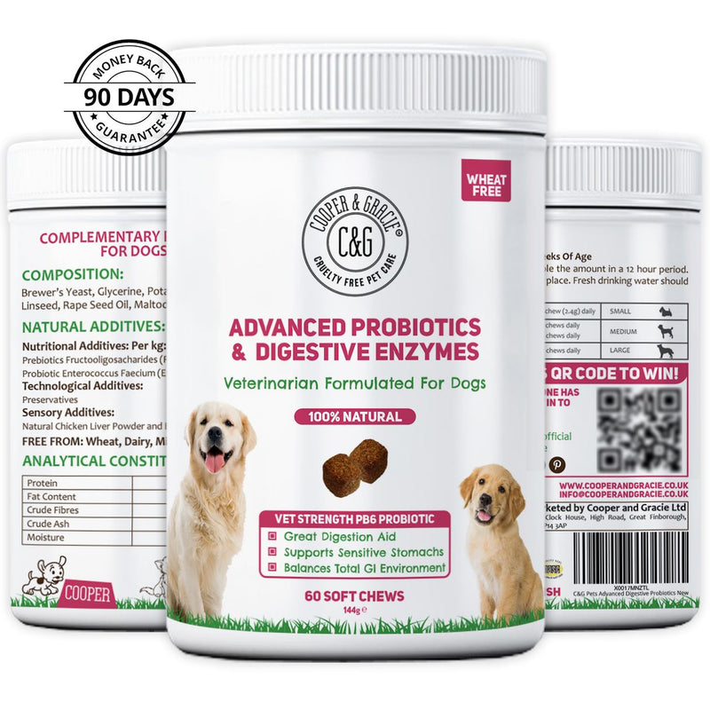 Probiotics for Dogs Supplements 60 Soft Chews (4597988163639)