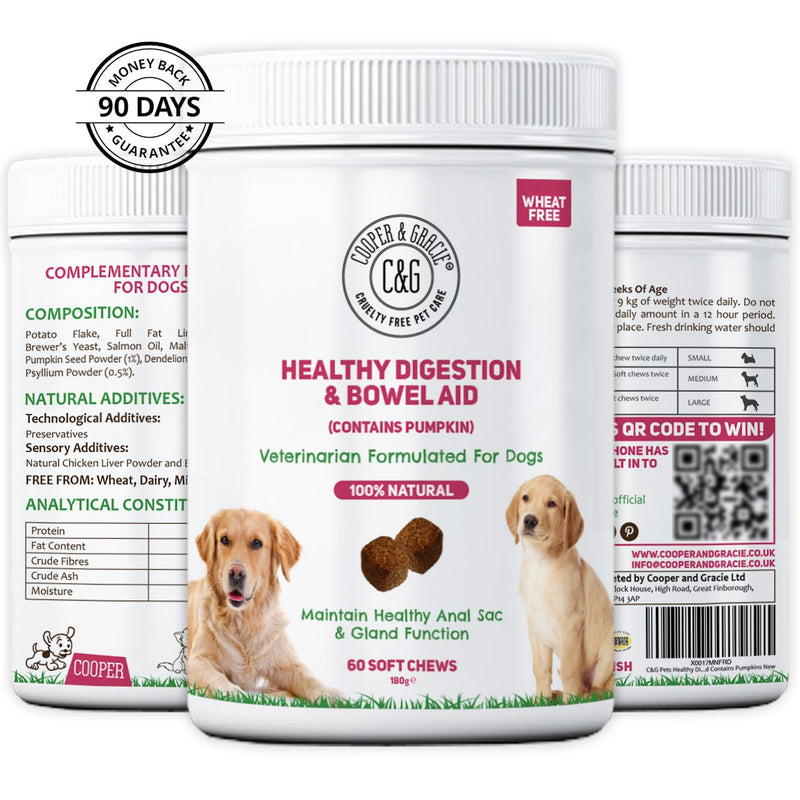 Supplement for Dogs Digestion (With Pumpkin) 60 Soft Chews (4597988655159)