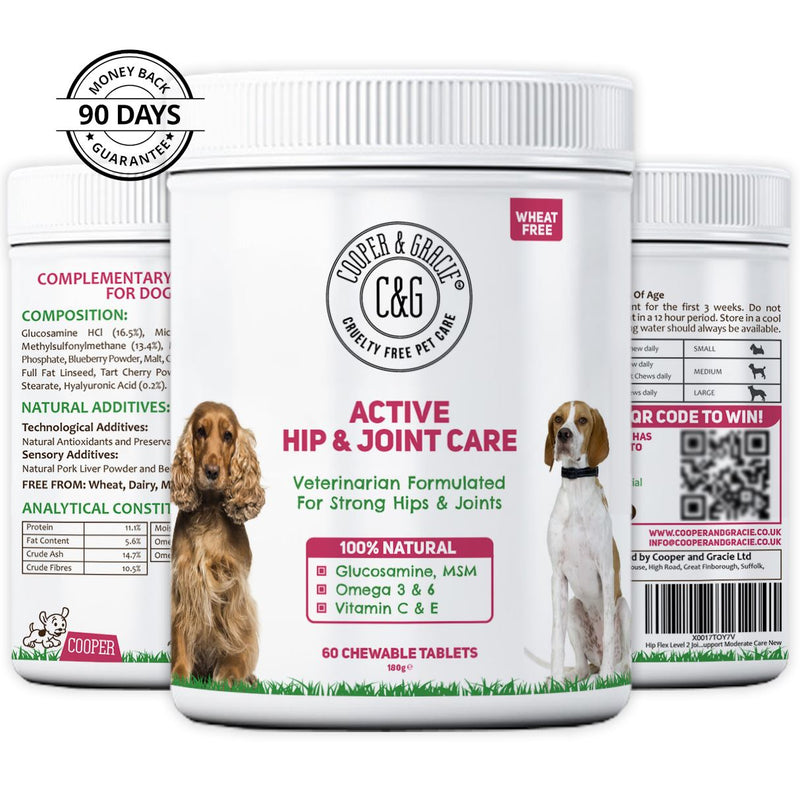 Active Hip and Joint Care for Dogs  60 Chewable Tablets (4597997010999)