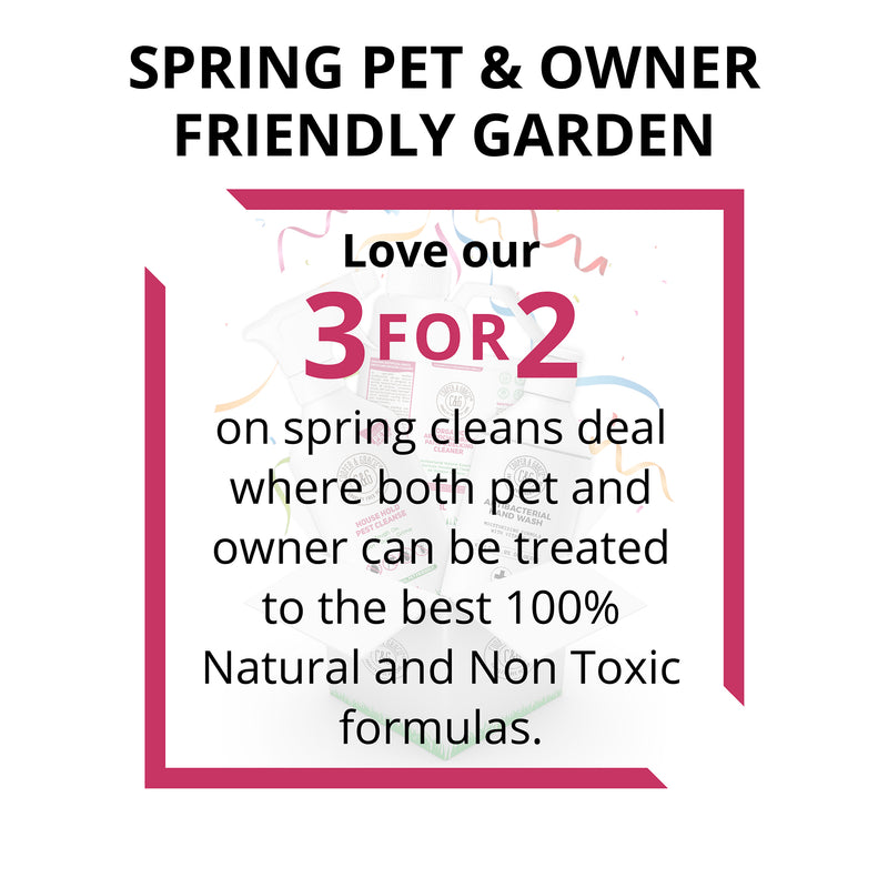 Spring Pet And Owner Friendly Garden Pack - Buy 2 Get 1 Free