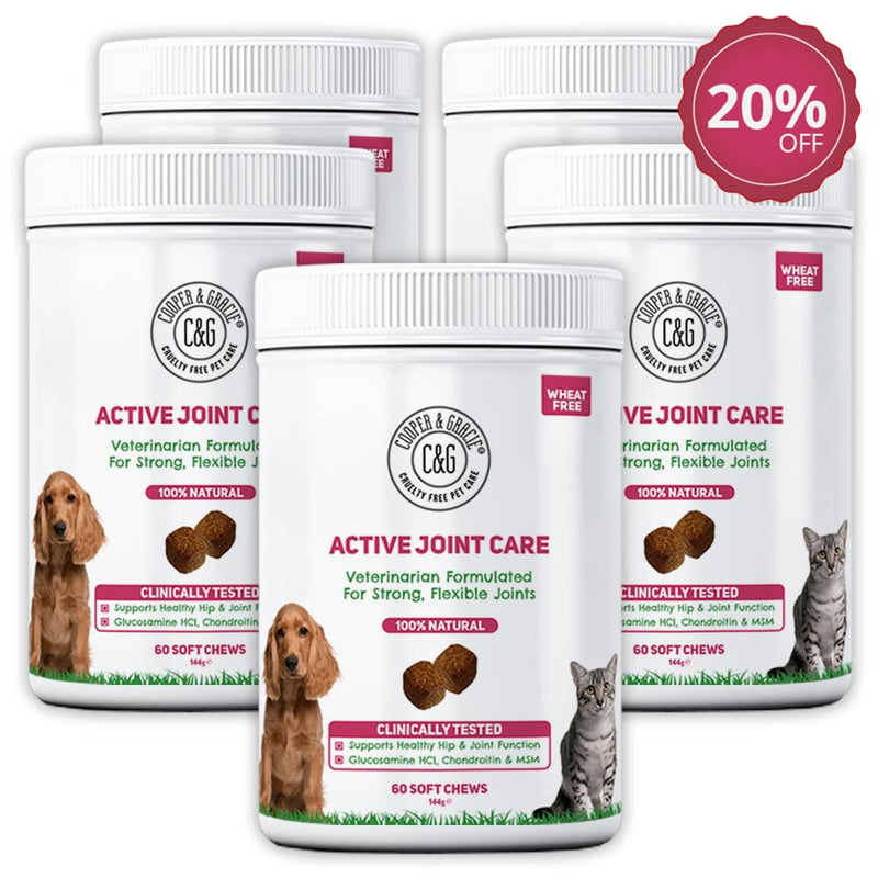 Active Joint Supplement for Dogs and Cats