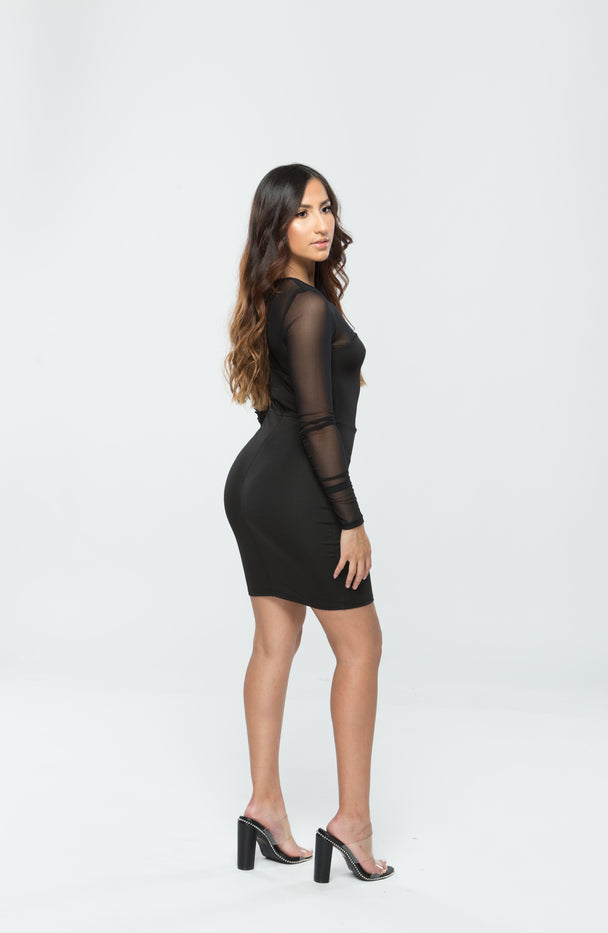 Mesh Detail Bodycon Mini Dress