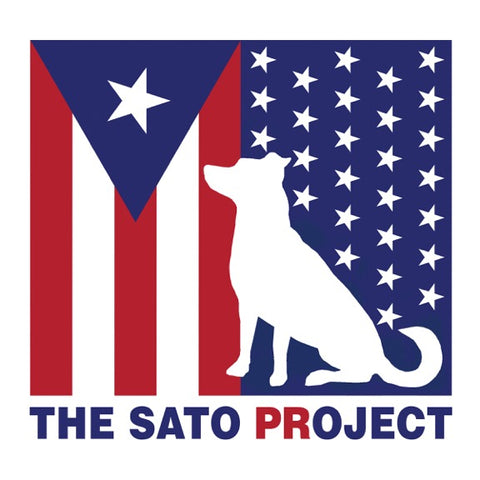 The Sato Project- a charity that goes above and beyond for the pups that need it the most