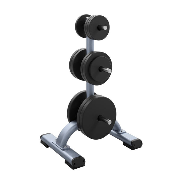 Blue Precor Weight Plate Tree - DBR 817, with weight plates added