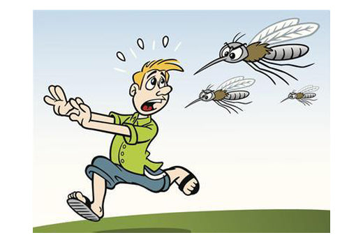 How to repel mosquitoes and protect family members?