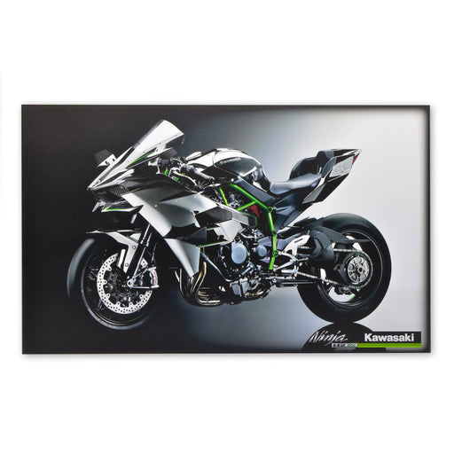 Kawasaki Ninja H2 SX Racing Motorcycle Wood Block Print Large