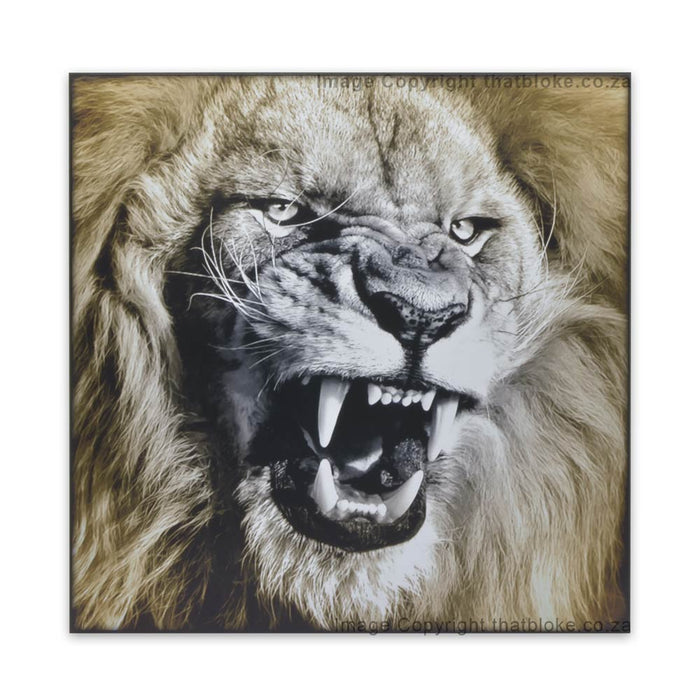 Lion South African Big Five Game Animal Wood Print