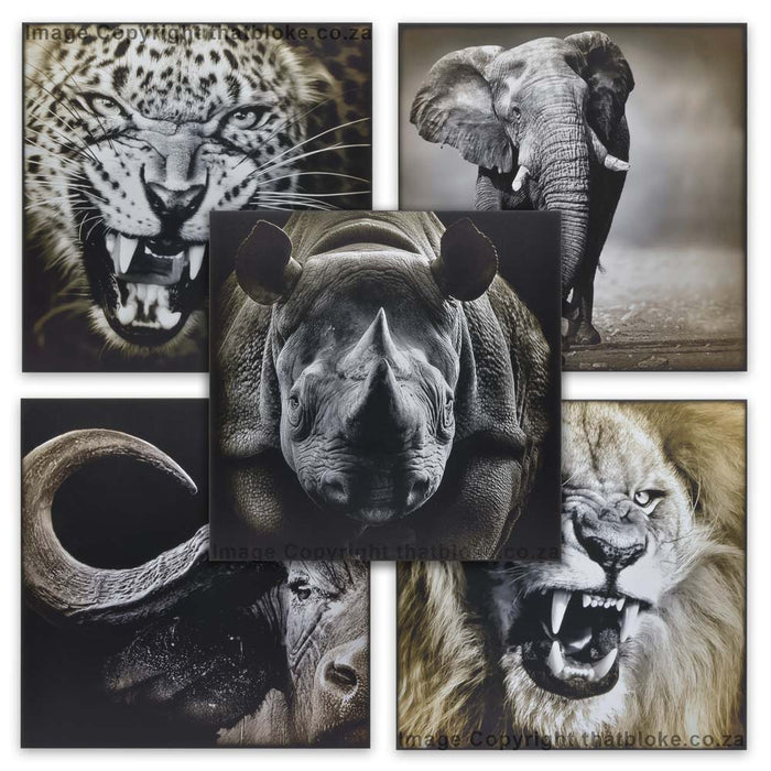 South African Big Five Game Animal Wood Prints Set of 5