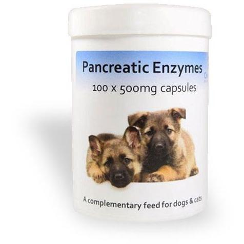 Chemeyes Supplements Pancreatic Enzyme Capsules -100 Capsules Pancreatic Enzyme Capsules -100 Capsules