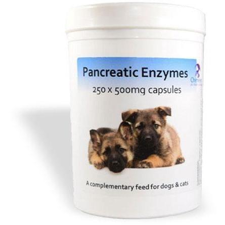 Chemeyes Supplements Pancreatic Enzyme Capsules -250 Pancreatic Enzyme Capsules -250