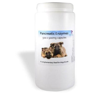 Chemeyes Supplements Pancreatic Enzyme Capsules -500 Pancreatic Enzyme Capsules -500