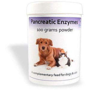 Chemeyes Supplements Pancreatic Enzyme Powder- 100 Grms Pancreatic Enzyme Powder- 100 Grms