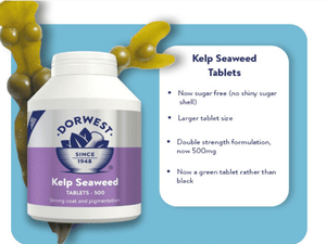 Dorwest Supplements Kelp Seaweed Tablets For Dogs And Cats  100 Tablets 5 060183510067 KS100