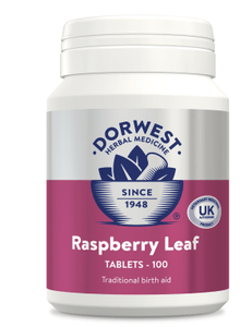 Dorwest Supplements Raspberry Leaf Tablets For Dogs And Cats 500 RL 500