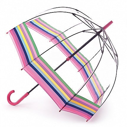 Colour Burst Stripe Birdcage