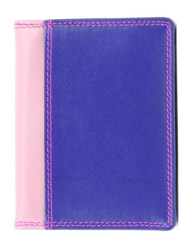 Credit Card Holder 3-13