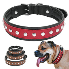 Spiked Studded Collar