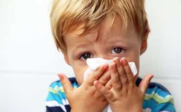 Will an Air Purifier Help with Allergies?