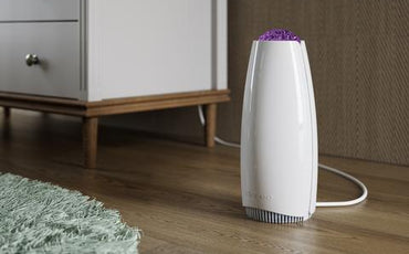 Common Air Purifier Myths Debunked