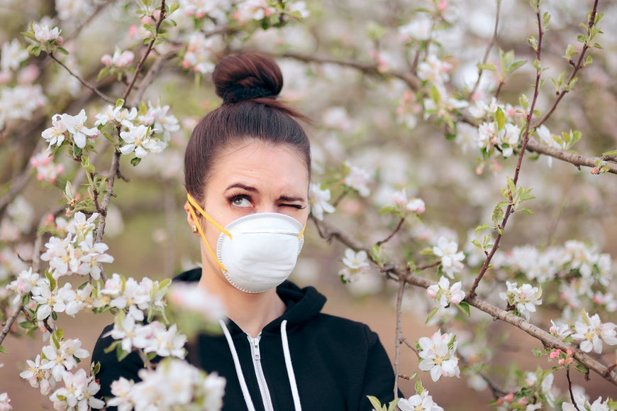 What Are the Best Air Purifiers for Allergies?