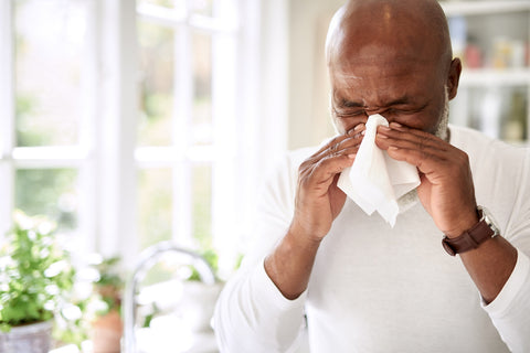 cedar fever allergies make life miserable