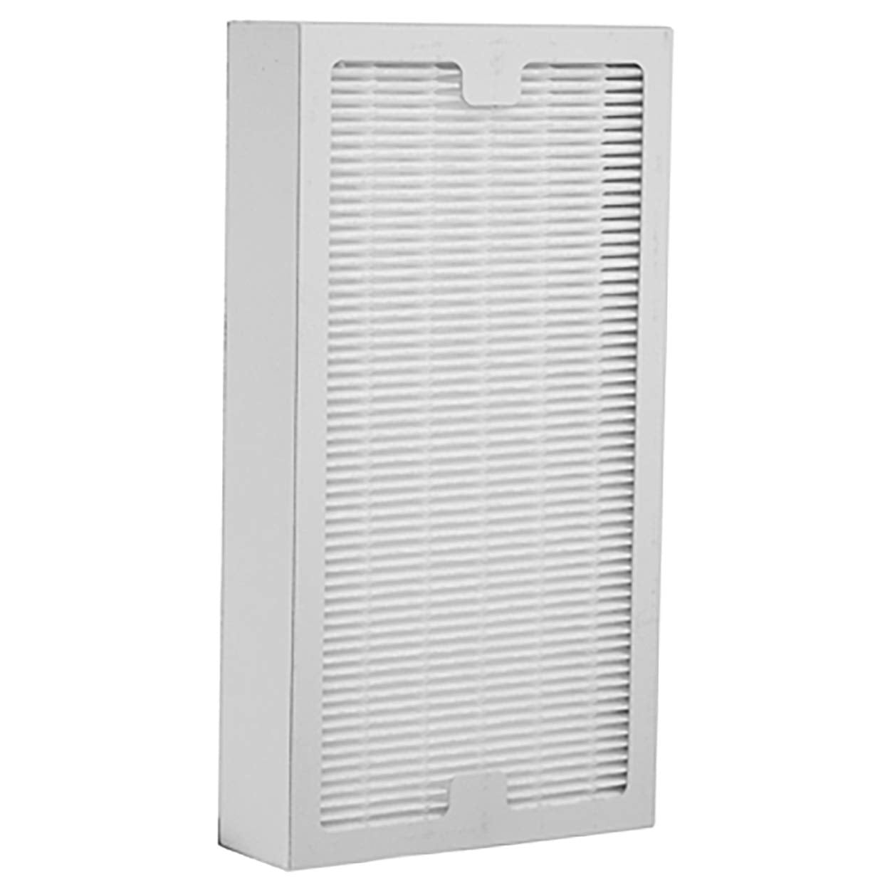 HunterHEPAFilter Hunter PermaLife Replacement Air Purifier Filter - 30966