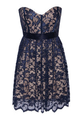 Elise Ryan Lace Dress