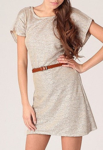 Champagne Shift Dress - Glitzy Angel