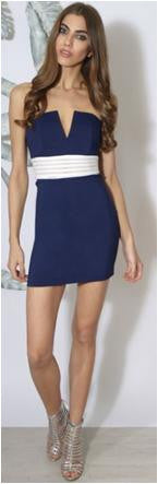 Rare Navy and White Trim Plunge Bodycon Dress - Glitzy Angel