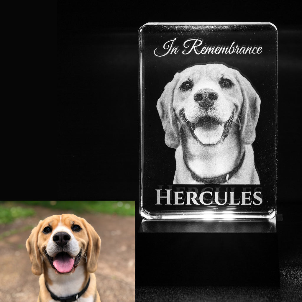 Personalized Pet Memorial Crystal- Ships in 3 Days- Made in USA