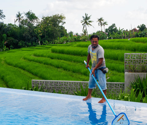 Skimming swimming pool water for leaves and debris