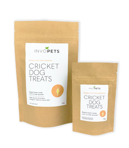 Sustainable, nutritious cricket dog treats