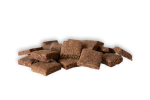 Healthy dog treats made from crickets and peanut butter