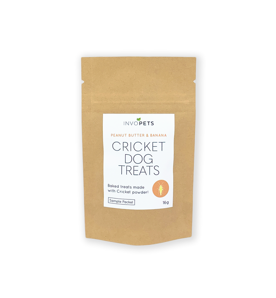 Healthy dog treats made from cricket protein