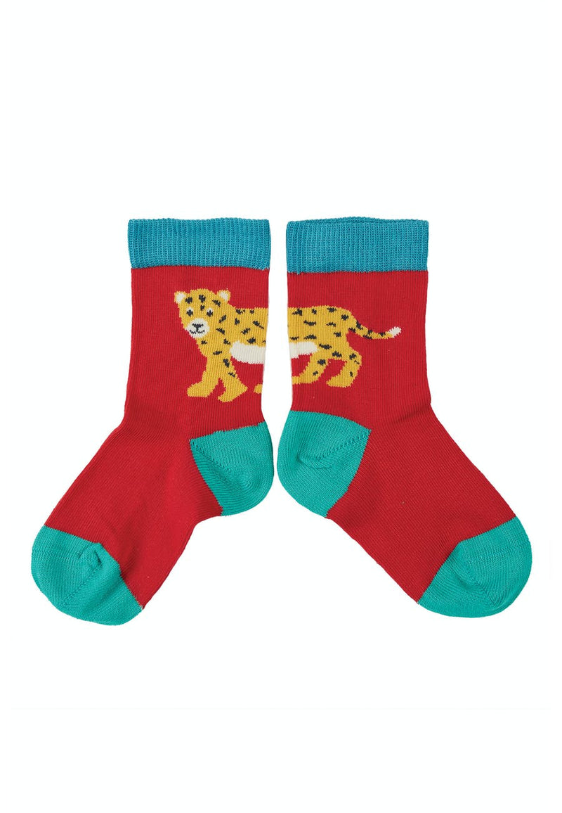 Little Socks 3 Pack, Big Cat Multipack