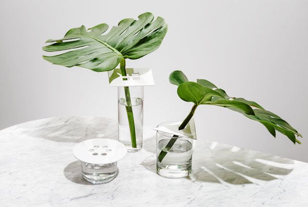 Anywhere Vases in White