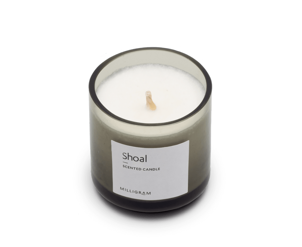 Scented Travel Candle · Shoal. Compendium Design Store, Fremantle. AfterPay, ZipPay accepted.