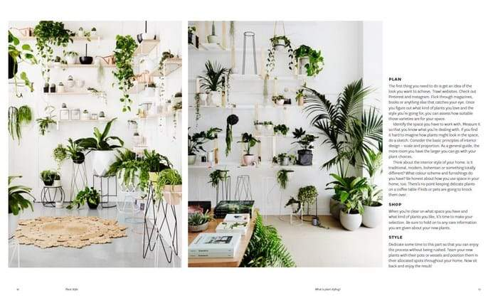 Plant Style: How to greenify your space. Thames & Hudson. Compendium Design Store. AfterPay, ZipPay accepted.