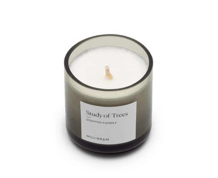 Scented Travel Candle Study of Trees