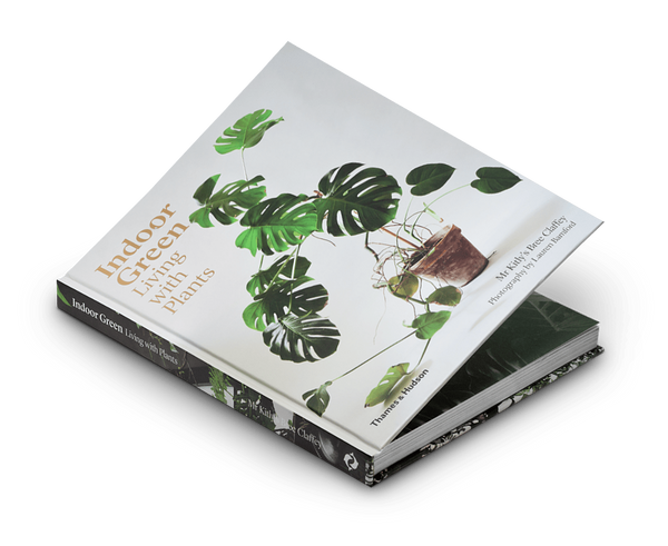 Thames & Hudson Books Indoor Green: Living with Plants