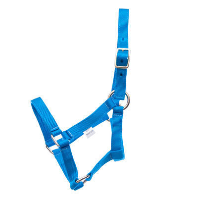 Jeffers Miniature Horse Halter, 2-yr old (under 200 lb)