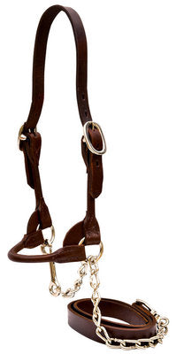 Classic Rounded Cattle Show Halter, Small