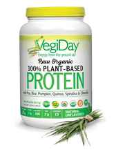 VegiDay Protein Powder, Natural Unflavored