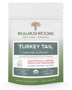 Turkey Tail Mushroom Extract Powder
