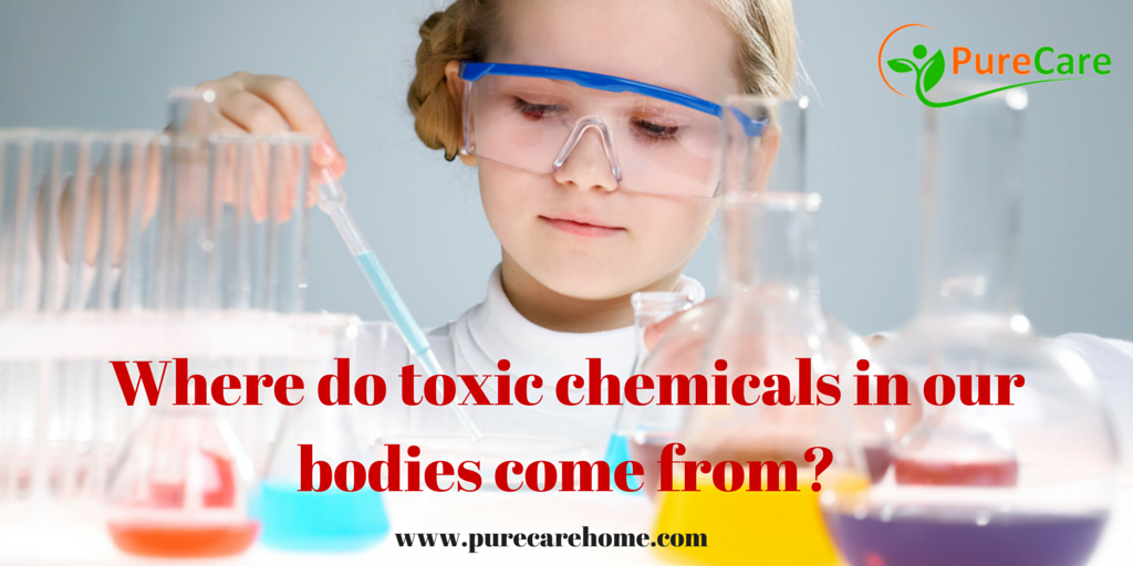 Where Do Toxic Chemicals in Our Bodies Come From?