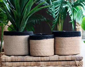 Set of 3 Jute Natural Round Planters with Black Border