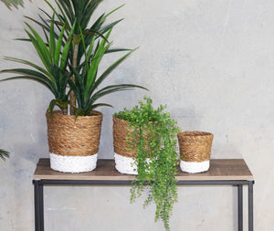 Set of 3 Round White Dipped Seagrass Planters