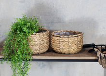Load image into Gallery viewer, Cattail Set of 2 Shallow Planters with Liners