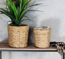 Load image into Gallery viewer, Cattail Set of 2 Planters with Liners