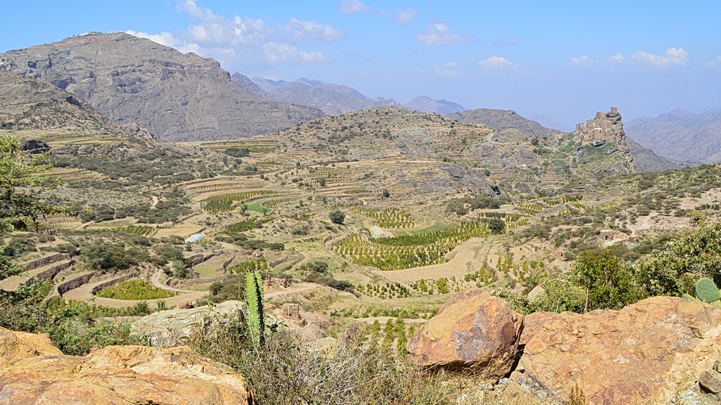 Overview of Yemeni coffee farm and surrounding lands
